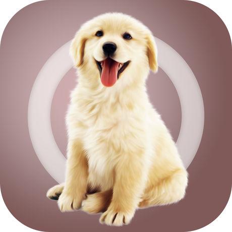 海外充值人狗交流器苹果版 直充到苹果账号余额